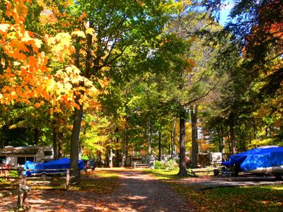 trailers-in-the-fall.jpg